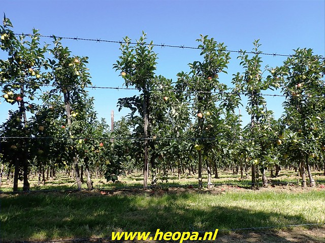 2021-08-14         dag 4  Rugzak -  10 - Daagse Heuvelland (77)