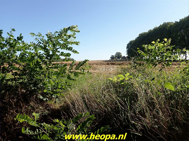 2021-08-14         dag 4  Rugzak -  10 - Daagse Heuvelland (61)