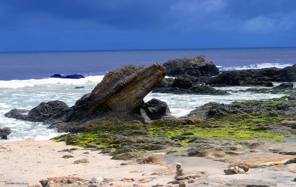 Pedra formato jacaré - Jericoacoara - Ceará