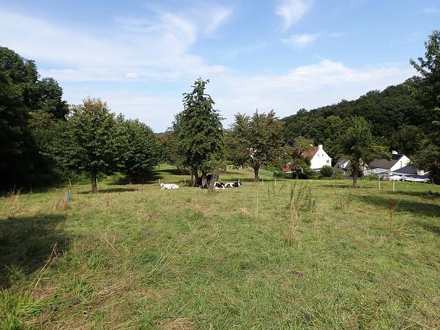 2021-08-12        Dag 2  Rugzak - 10 - daagse  Heuvelland   (138)
