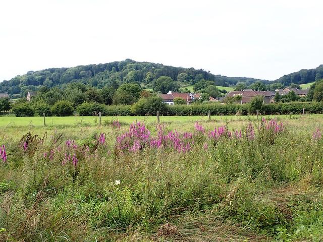 2021-08-12        Dag 2  Rugzak - 10 - daagse  Heuvelland   (42)