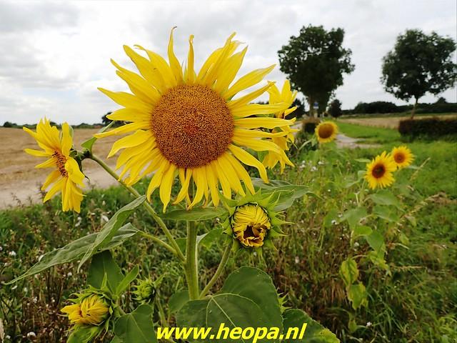 2021-08-13         Dag 3 Rugzak - 10 -  Daagse  Heuvelland   (99)