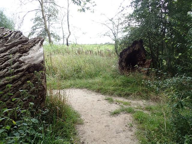 2021-08-12        Dag 2  Rugzak - 10 - daagse  Heuvelland   (86)