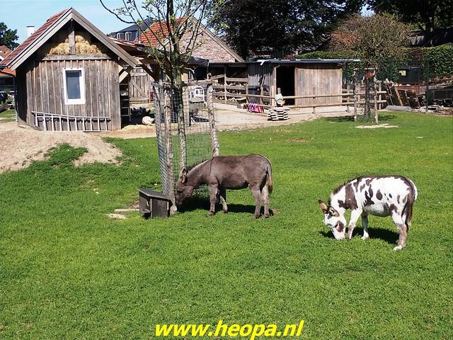 2021-08-14         dag 4  Rugzak -  10 - Daagse Heuvelland (83)