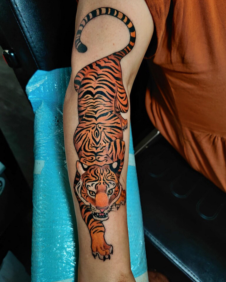 Freshly inked orange and black tiger tattoo on a forearm