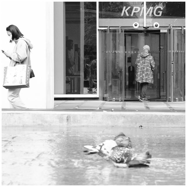 KPMG Pigeon Bath