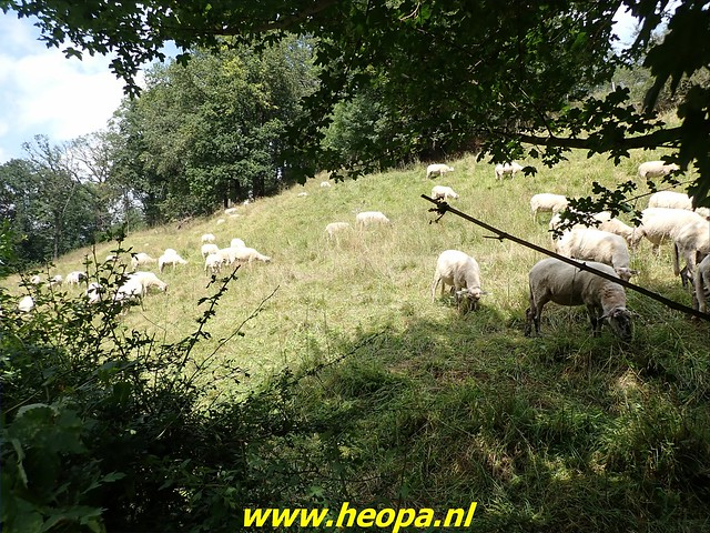 2021-08-11         Dag 1  Rugzak - 10 - daagse Heuvelland  (124)