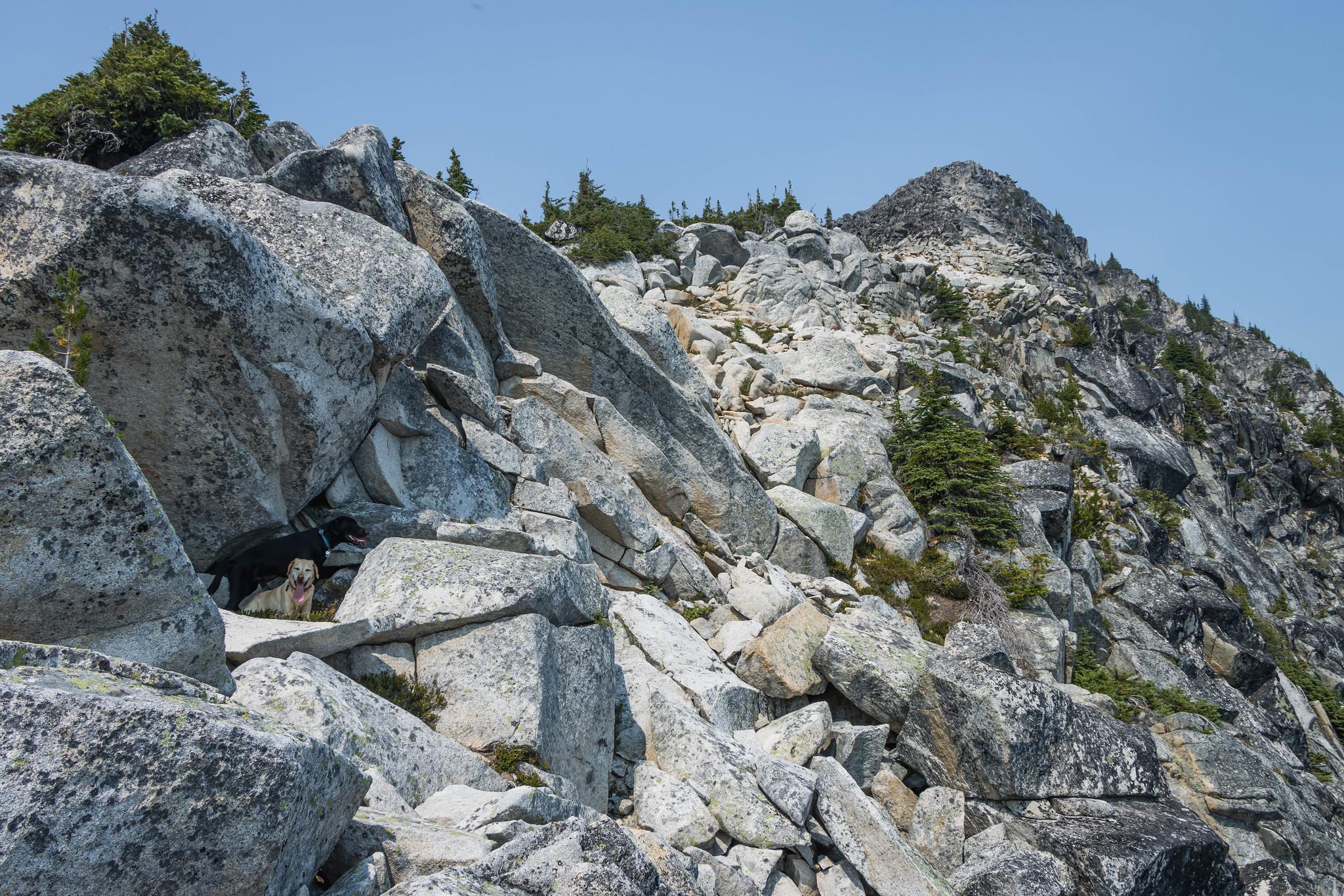 The final stretch on Pasayten Peak