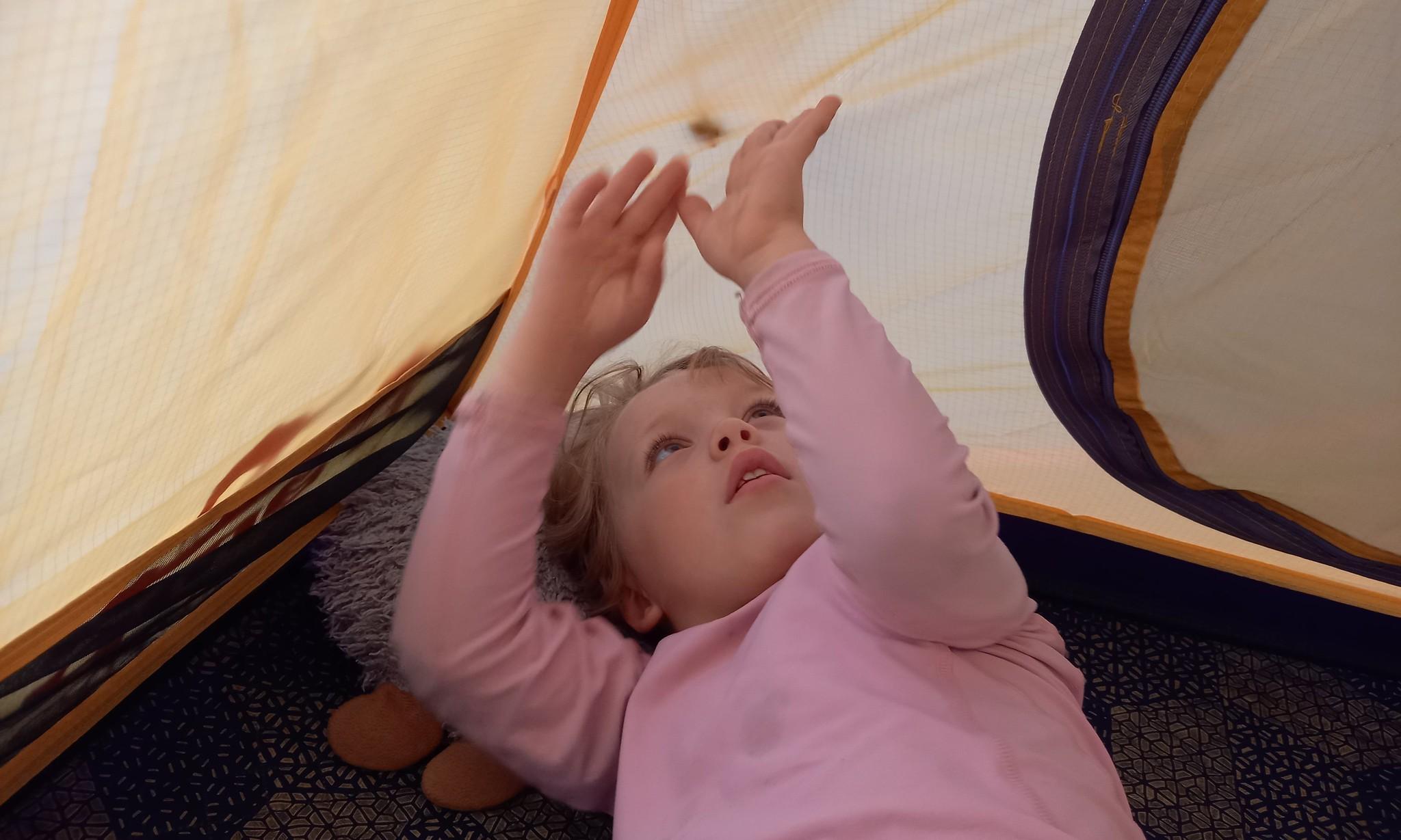 Палатка 8