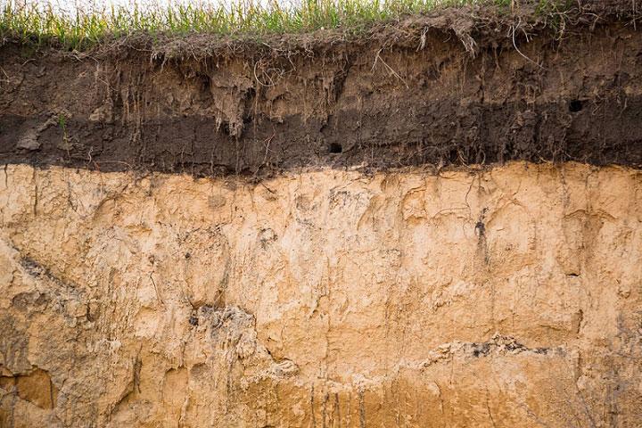 202108農業碳排與淨零策略。土壤的碳貯量遠大於生物與大氣的總和。The 4 per 1000 Initiatives