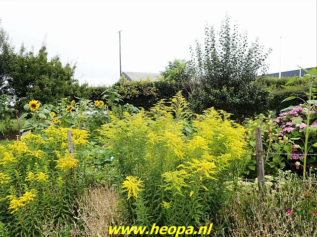 2021-08-11         Dag 1  Rugzak - 10 - daagse Heuvelland  (81)