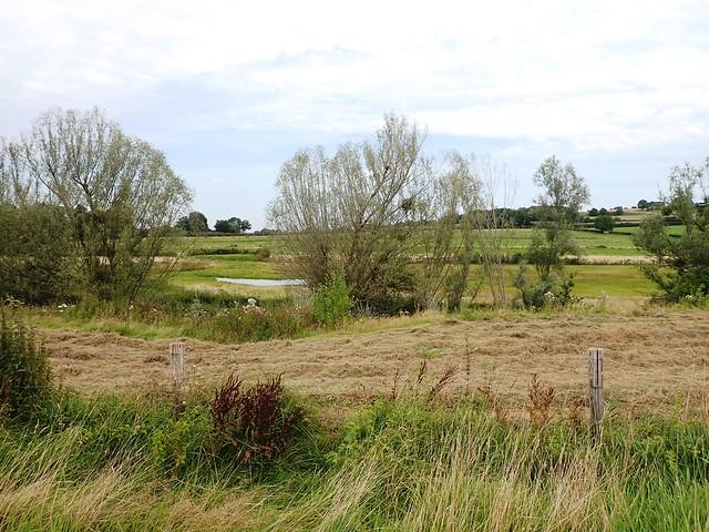 2021-08-12        Dag 2  Rugzak - 10 - daagse  Heuvelland   (83)