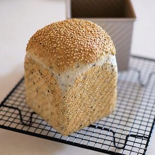 米粉ごまパン 20210817-DSCT2488 (3)