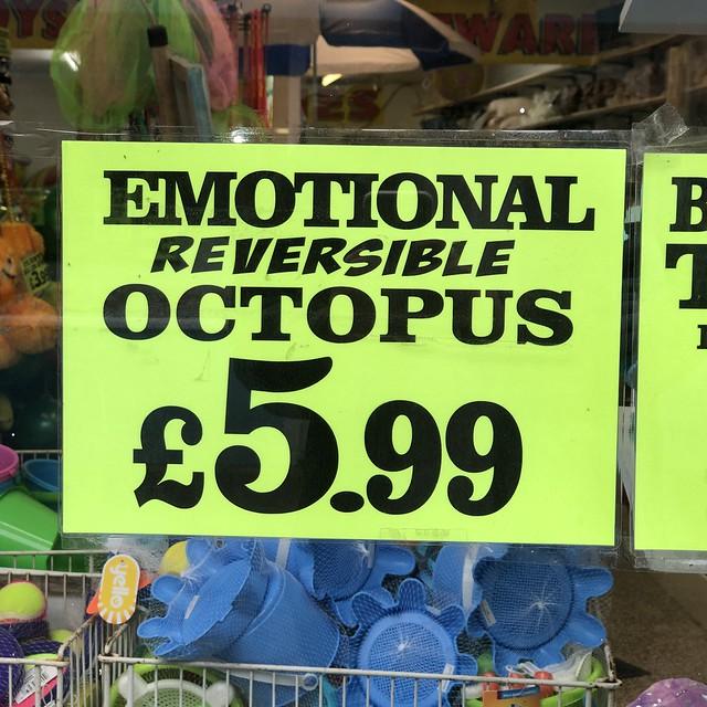 Emotional reversible octopus