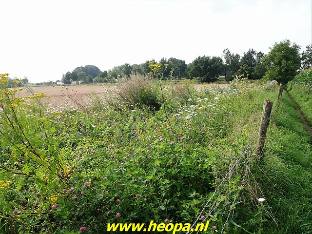 2021-08-13         Dag 3 Rugzak - 10 -  Daagse  Heuvelland   (24)