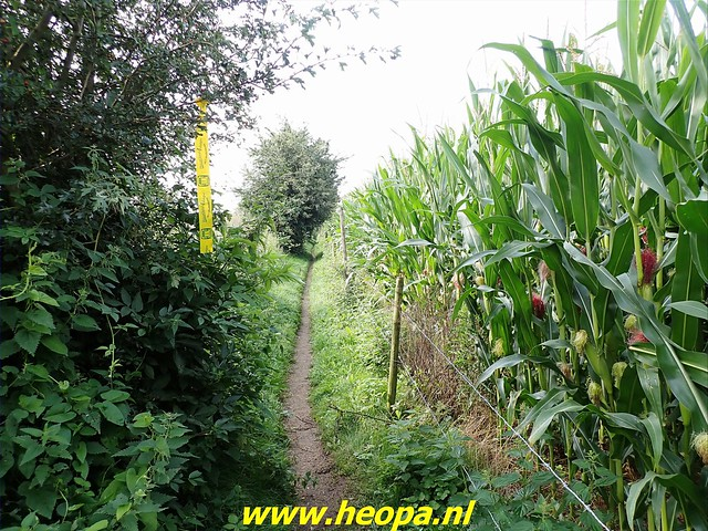 2021-08-13         Dag 3 Rugzak - 10 -  Daagse  Heuvelland   (23)
