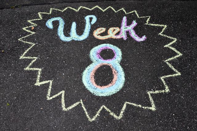 Week 8 2021 Newsletter