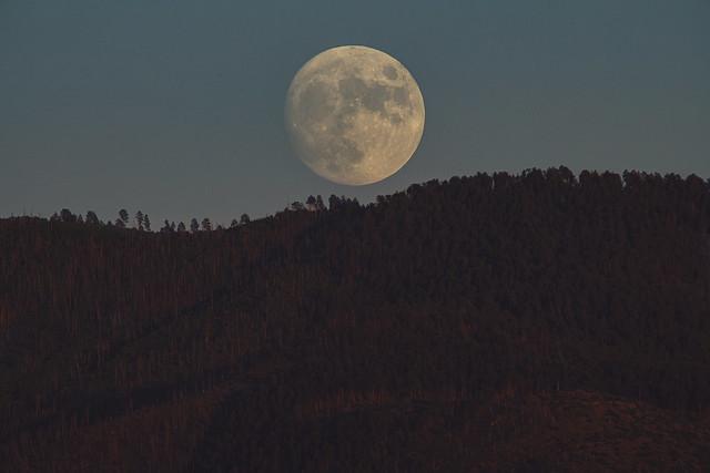 August's *nearly* Full Moonrise