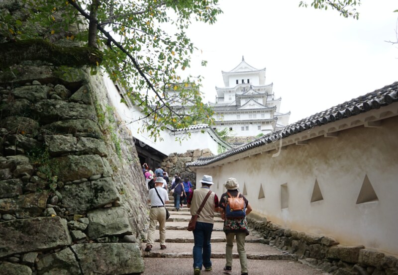 long-and-winding-road-to-the-castle himeji
