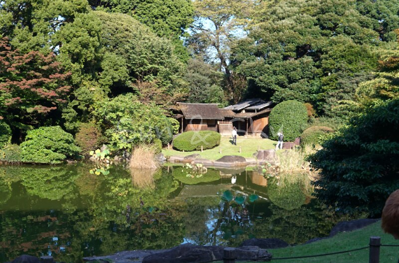 tohaku garden