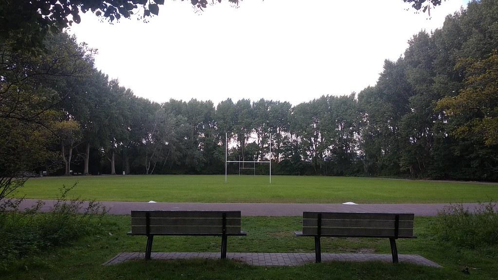 Rugby entre árboles