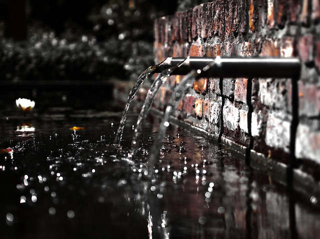 💧 Water feature