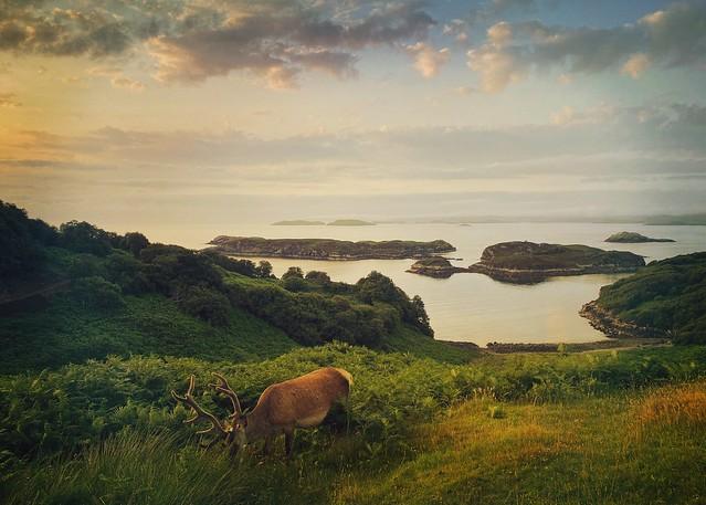 Midsummer Evening, Drumbeg, Sutherland