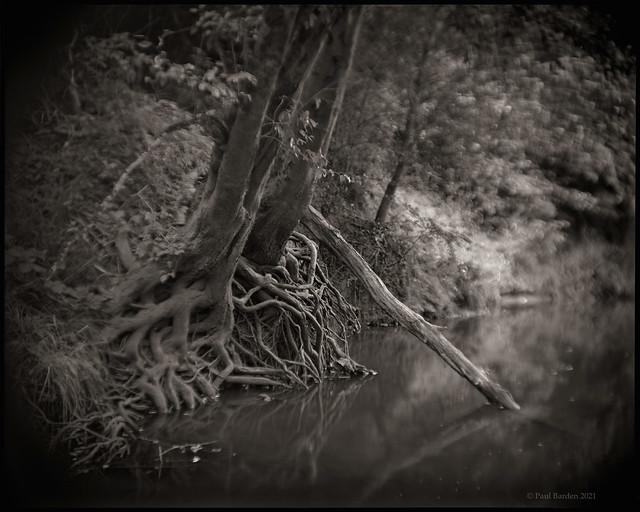 River Magic No. 1