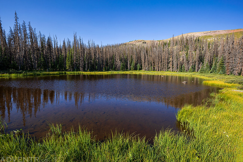 Hidden Lake Morning