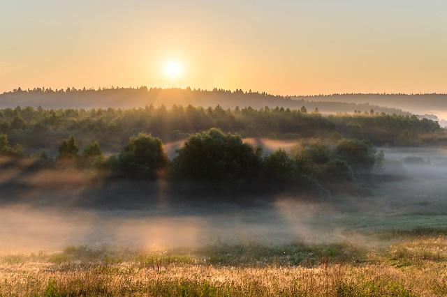 Панское Калужская область