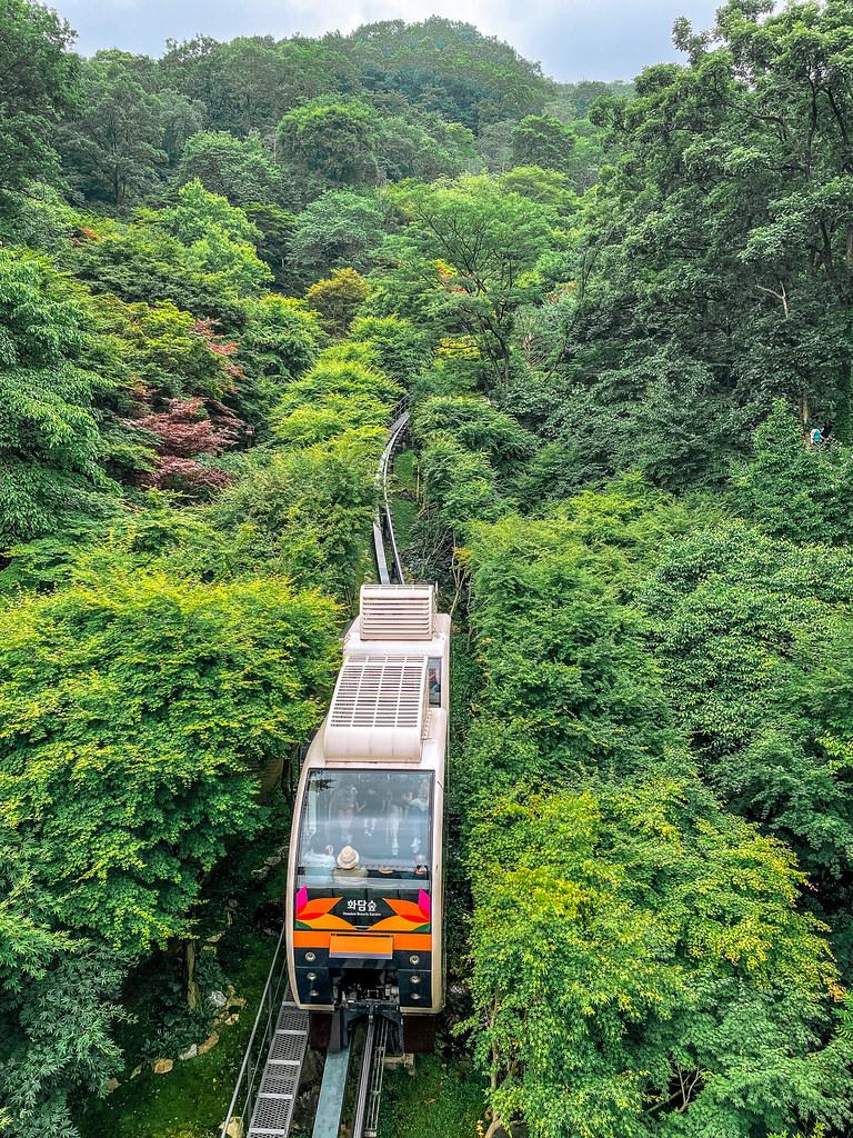 Hwadam Forest
