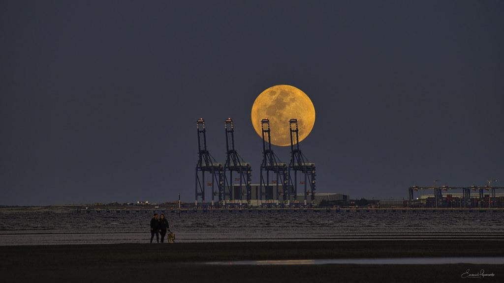 August full moon rise