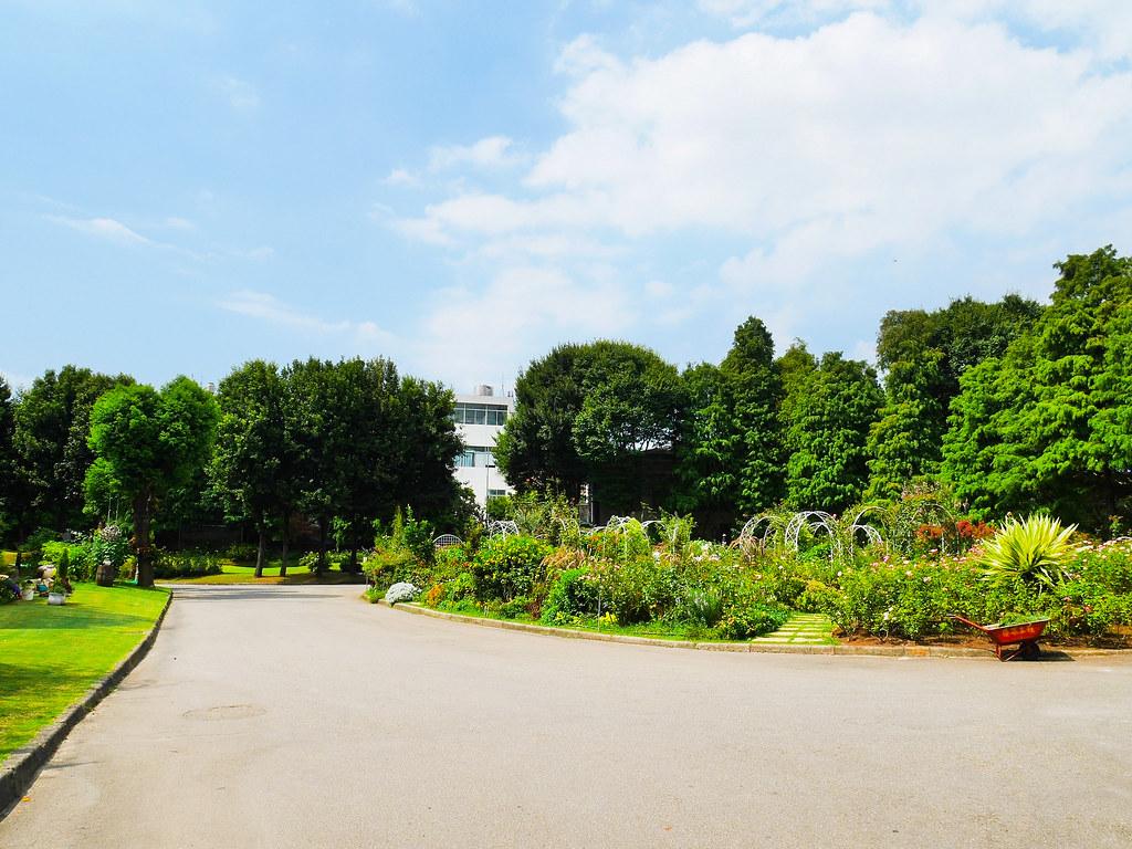 桃園免門票景點雅聞魅力博覽館桃園楊梅玫瑰園桃園景觀花園 (1)