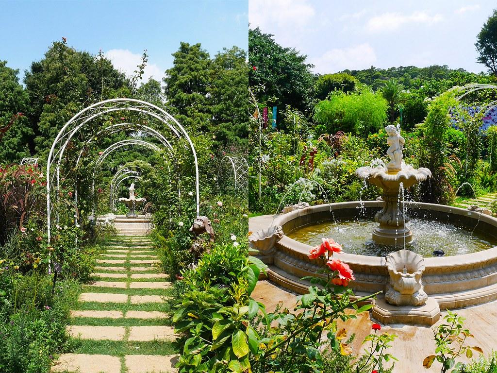 桃園楊梅景點楊梅一日遊免費景點觀光工廠推薦雅聞玫瑰園歐式花園庭園