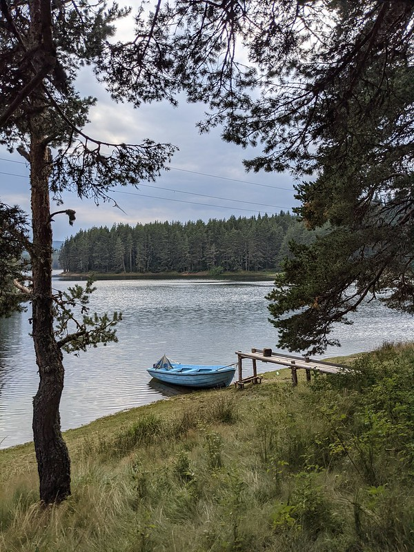 Small blue motorboat moored to a small pier, with pine woods in the background