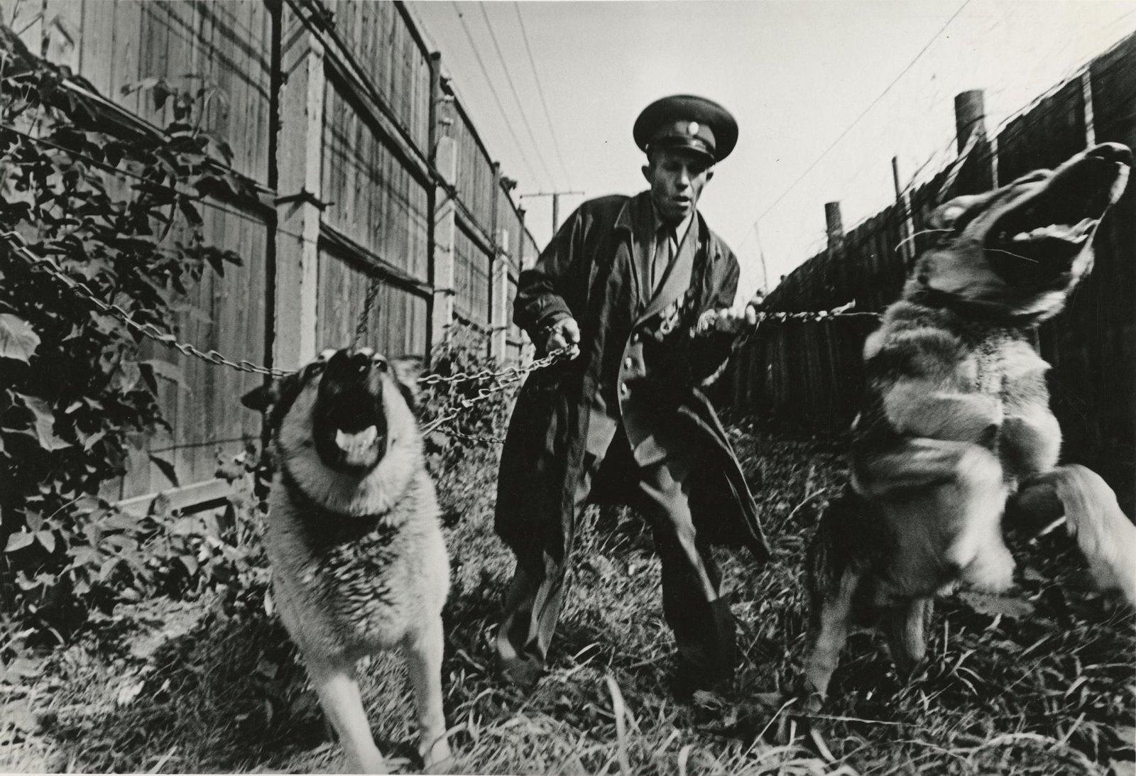 1978. Исправительно-трудовая колония. Надежная охрана