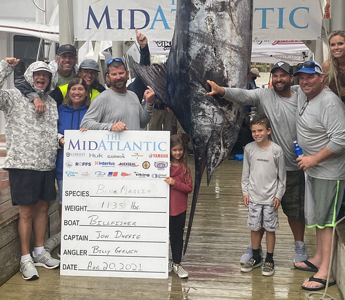 Photo of group of people standing with record blue marlin