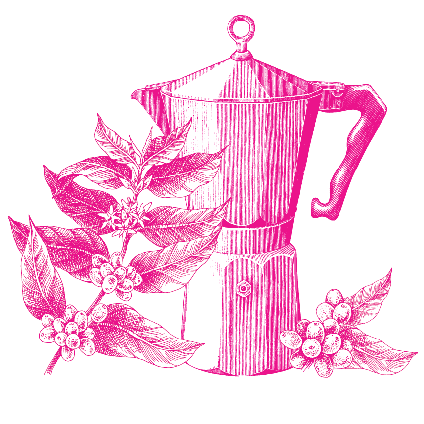 Line drawing of a moka pot and coffee berries