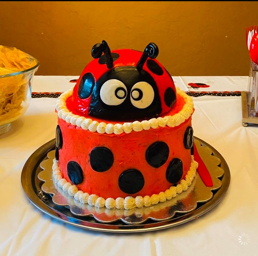 Ladybug Cake by Lovebug Cakes