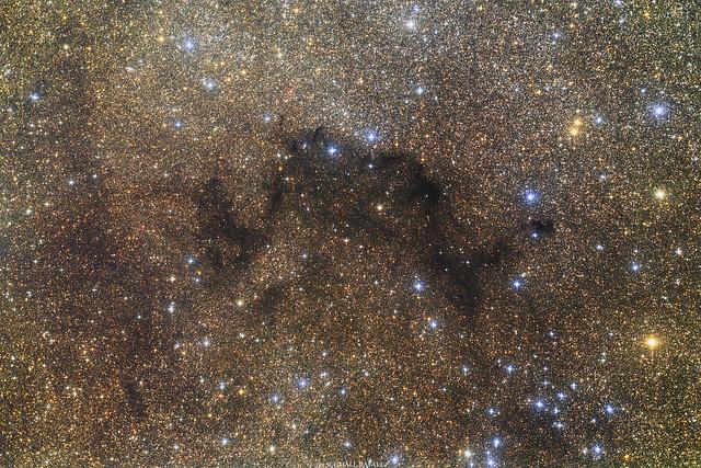VCSE - Az LDN 792 (Kunkori-köd, Pigtailed Nebula) Schmall Rafael felvételén. Figyeljük meg az előtérben látszó számos kék csilagot - a Vul OB1 asszociáció fényes, kékes és kékesfehér csillagait. - Forrás: Schmall Rafael