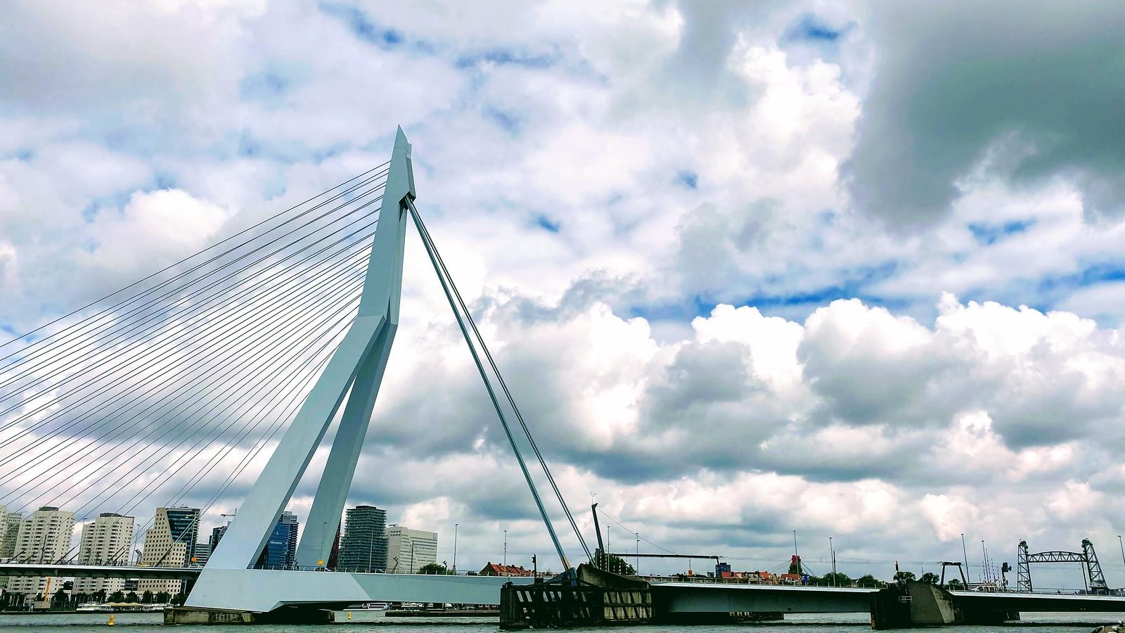 Broek boven Rotterdam - willem haring