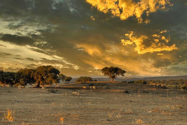 Trujillo - Extremadura