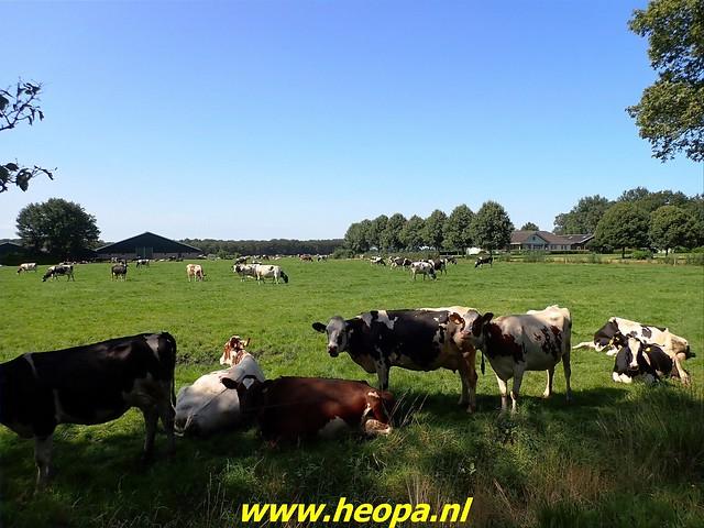 2021-08-23   Hoogeveen- Wijster  (37)