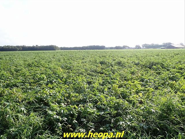 2021-08-23   Hoogeveen- Wijster  (10)