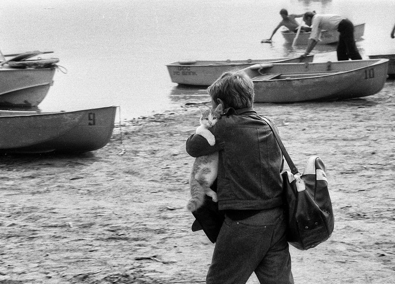 1977. Братск. Морской кот. Водная станция