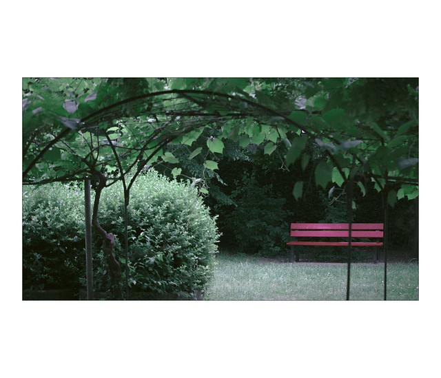 The Red Bench