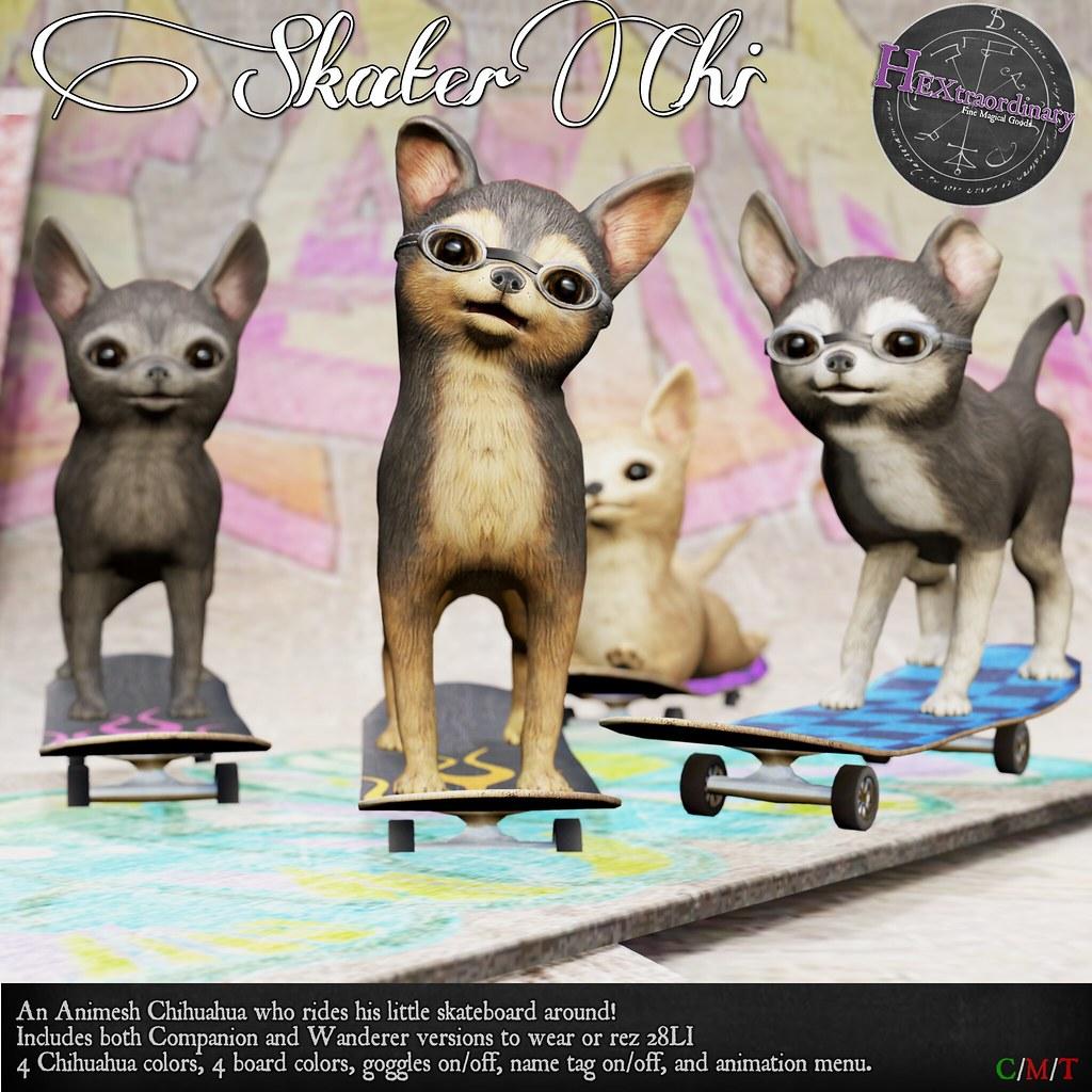 HEXtraordinary – Skater Chi – UBER