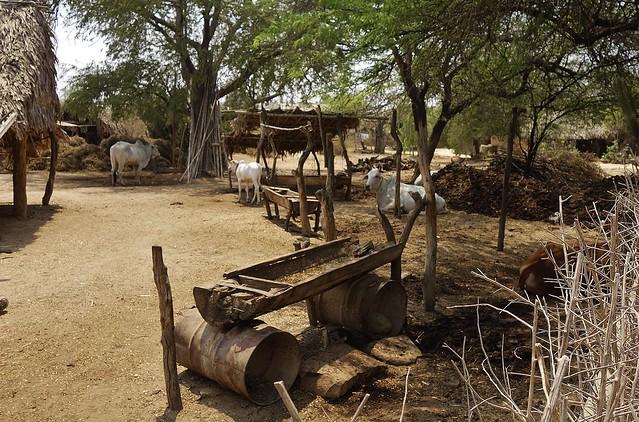 MYANMAR, Burma- Besuch im Dorf Minnanthu In der archäologischen Zone rund um Alt-Bagan, 78449/13983