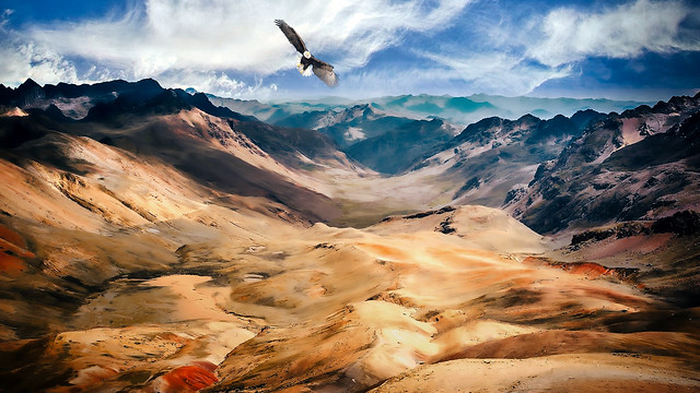 Mountains with Eagle in the Rocky Mountains, USA