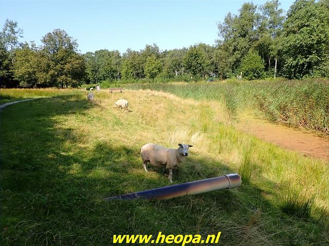 2021-08-23   Hoogeveen- Wijster  (59)